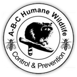 abc-wildlife-logo