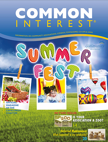 common interest summer fest magazine cover
