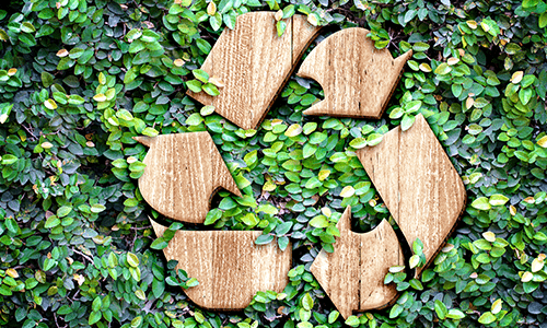 go green and recycle