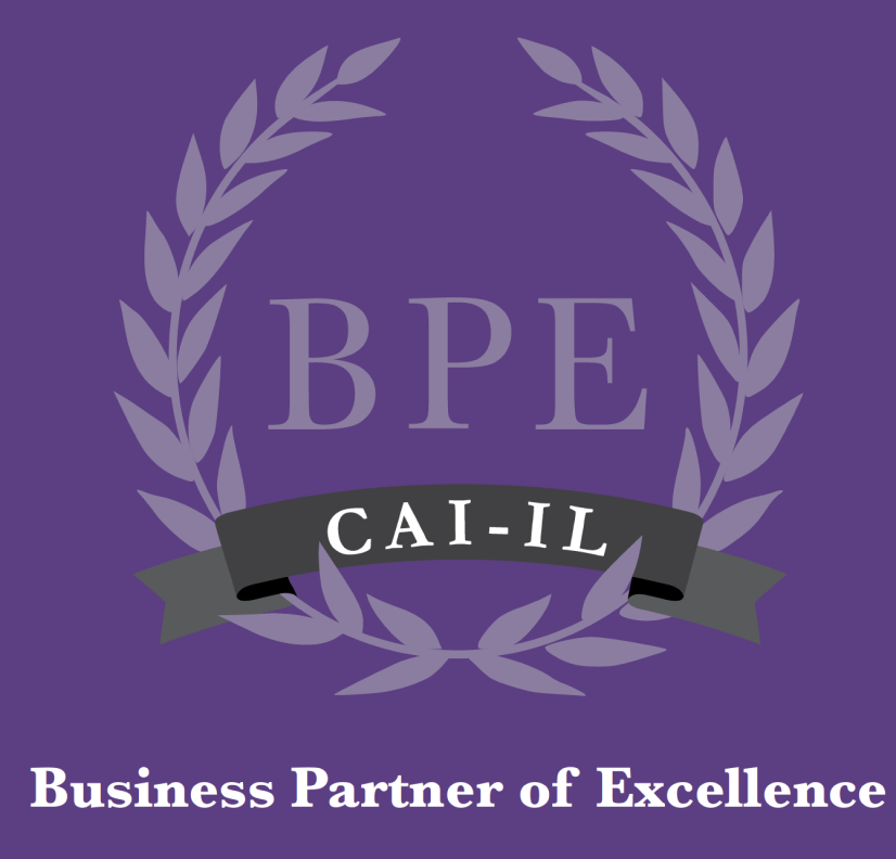 Business Partner of Excellence branding