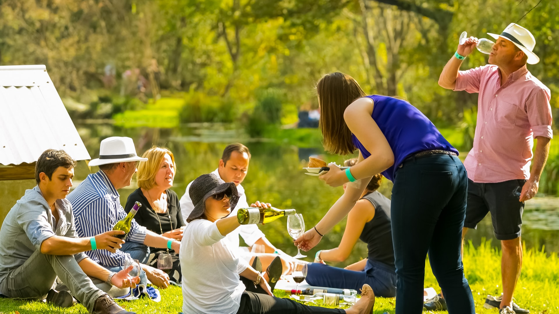 group of people sharing and drinking wine at picnic