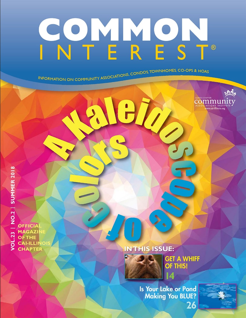 A Kaleidoscope of Colors common interest magazine cover